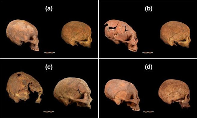 12,000 years old elongated skulls found in northeastern China