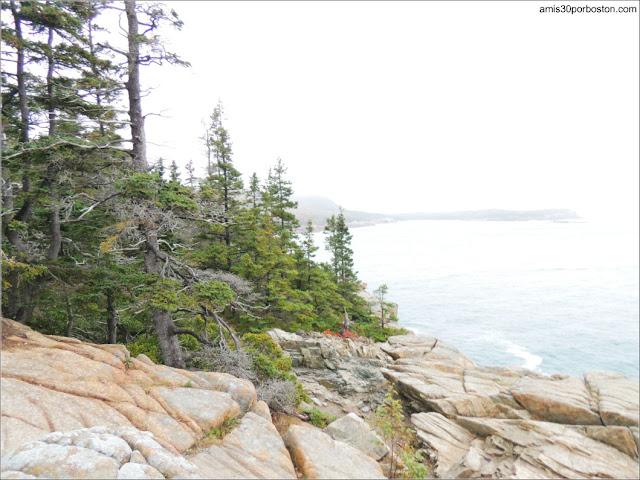Otter Cliffs en el Parque Nacional Acadia, Maine