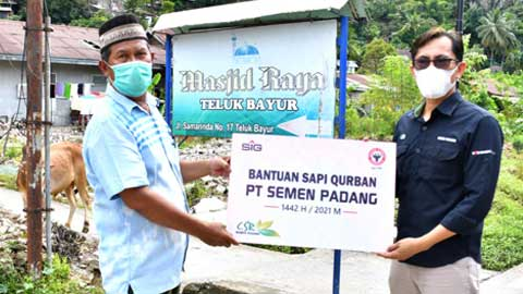 Penyerahan hewan kurban oleh Staf CSR Semen Padang