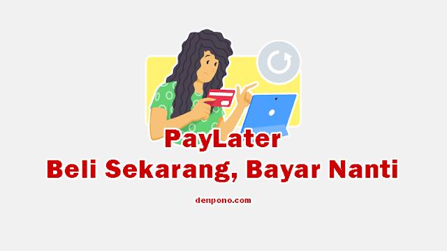 Apa itu Paylater? Pengertian dan Cara Mendapatkannya