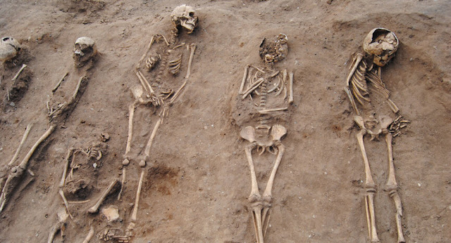 Black Death 'Plague Pit' discovered at 14th-century monastery hospital in Lincolnshire