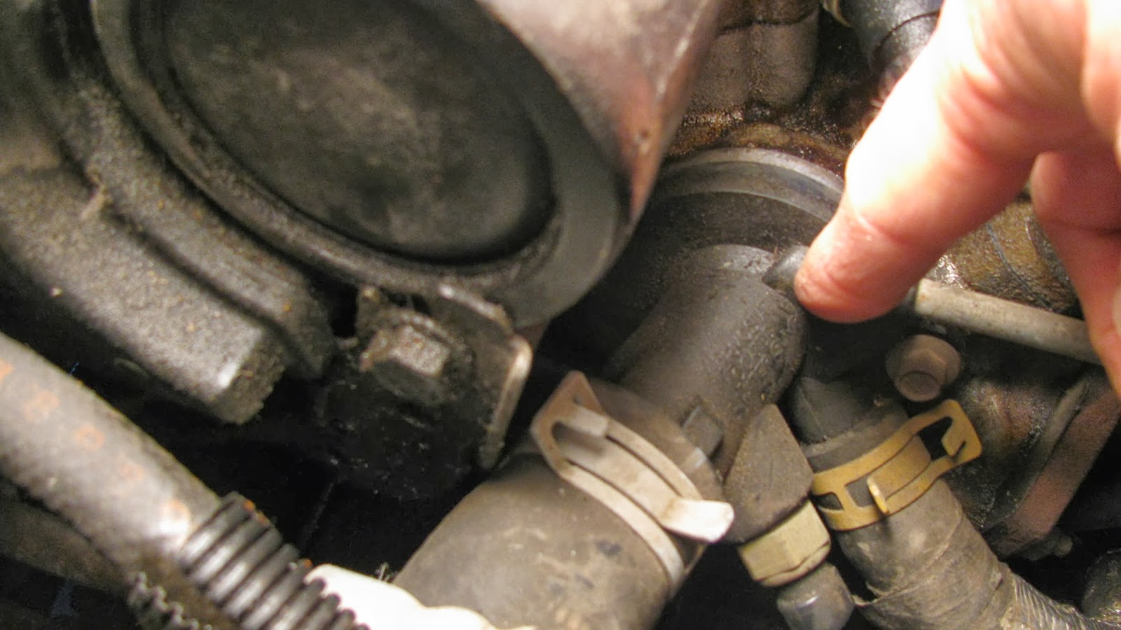 2002 Chevy Cavalier Car Stereo Wiring Diagram Hopkins Trailer Plug For 2000 Pontiac Grand Am Toyota Corolla ...