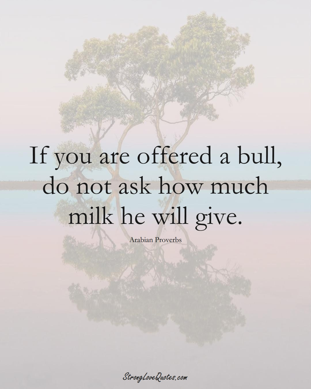 If you are offered a bull, do not ask how much milk he will give. (Arabian Sayings);  #aVarietyofCulturesSayings