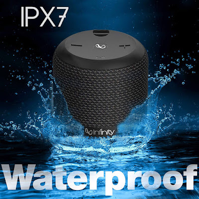 Infinity Fuze 100 Speaker