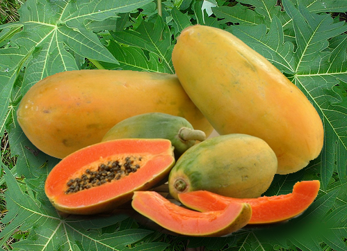 Papaya Fruit Nutrition Facts