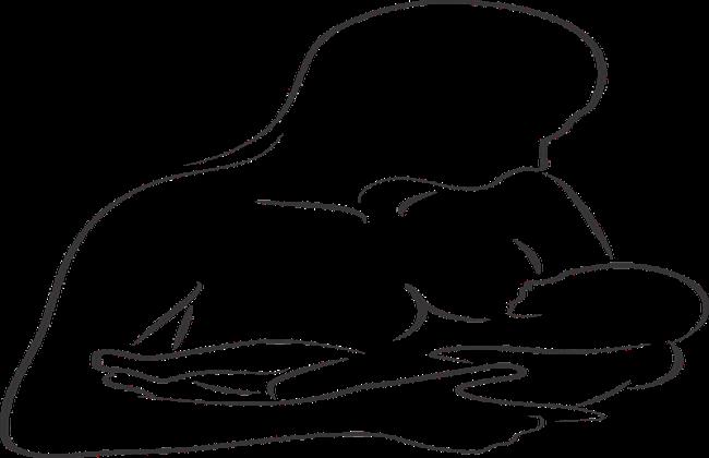 علاج صلابة الثدي و جمود اللبن في الثدي بالأعشاب