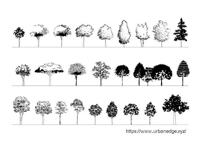 Trees elevation cad blocks download - 25+ Tree dwg drawings