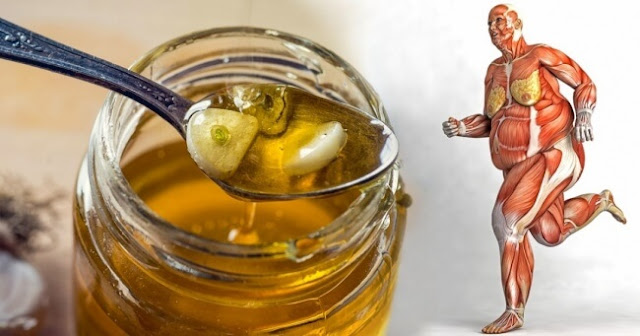Eat Honey Every Day And These 8 Things Are Going To Happen To Your Body
