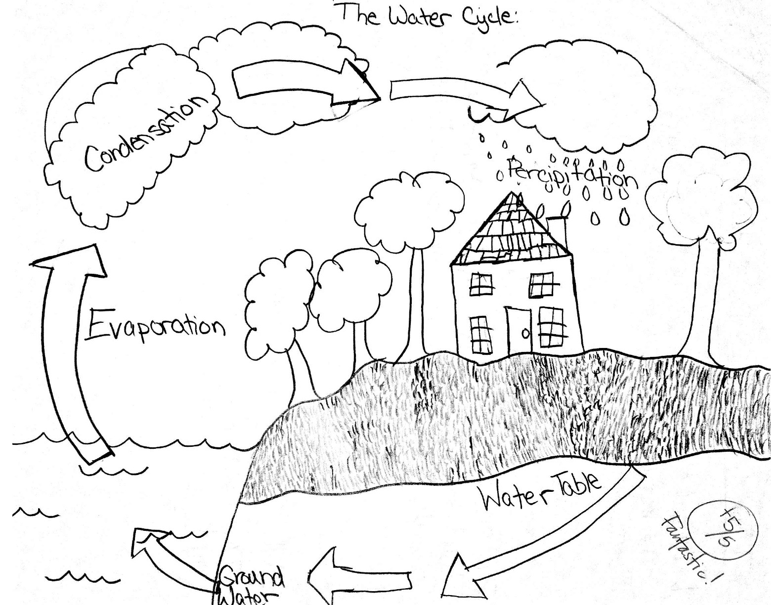 Water Cycle Worksheet For Kindergarten Cycles In Nature