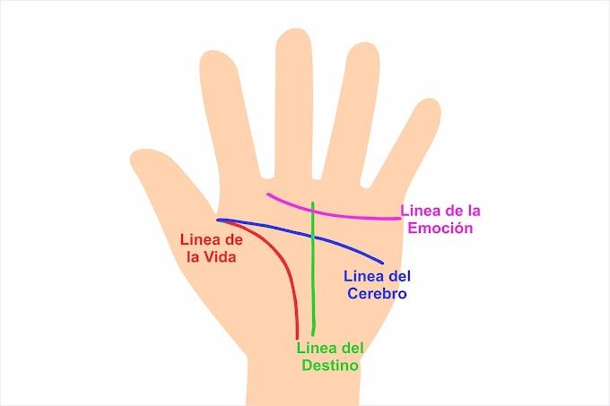 Tienes suerte de tener una M en la palma de tu mano, mira el porque