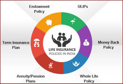 5 Year lic insurance policy