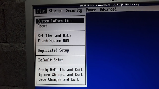 Hp BIOS Setup Environment