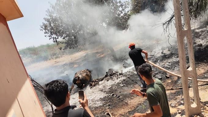 ભચાઉ તાલુકાના વામકા ગામે વાડામાં લાગેલ આગમાં ભેંસ બળી ને ભડથું