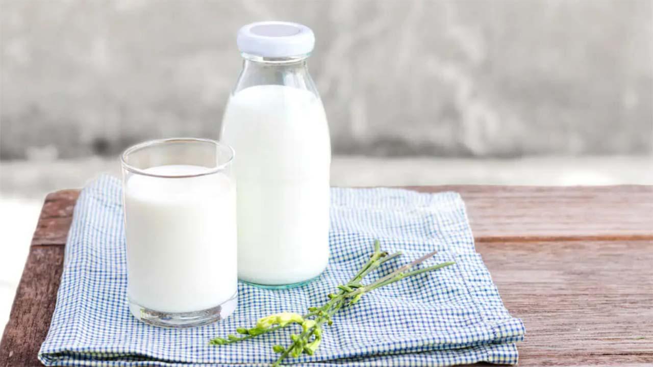 Manfaat Susu Beruang untuk Kesehatan dan Pertumbuhan