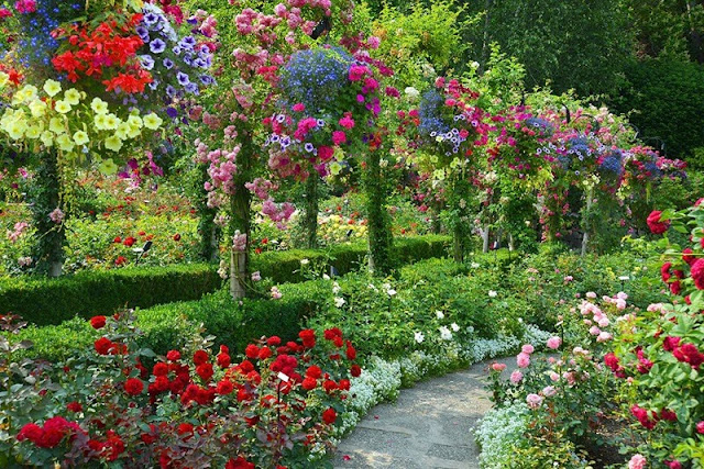 بستان زهور