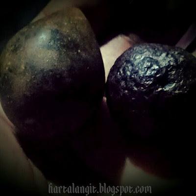 gambar bagore dan munta besi asli