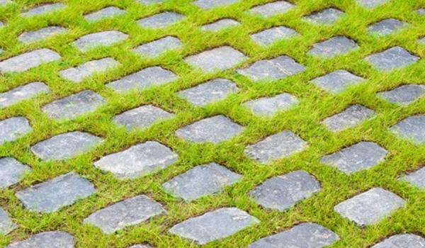Barefoot Patio