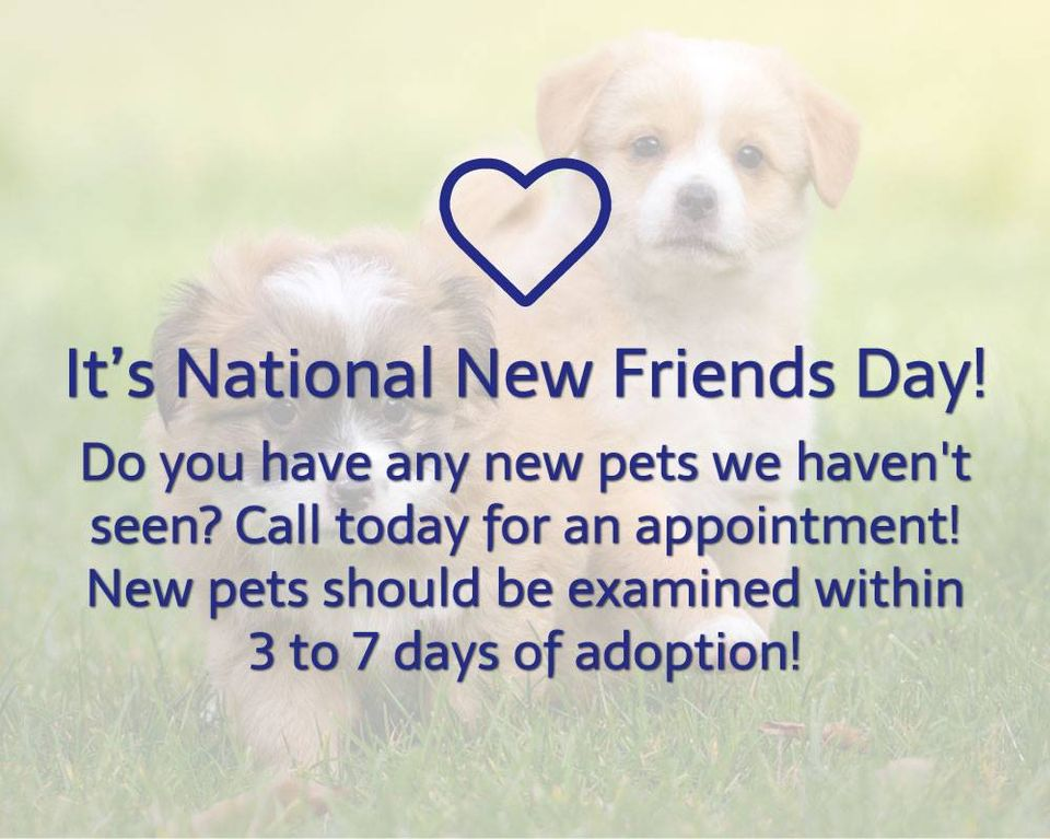 National New Friends Day Wishes Images