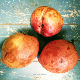 Kuji thekera (কুজীঁ ঠেকেৰা) is a wonder fruit of Assam belongs to the garcinia family. It's English name is gamboge. The scientific name of kuji thekera is Garcinia morella (Gaertn.) Desr. Kuji thekera is used as a vegetable in Assamese cuisine. The dun-dried kuji thekera is used as a herbal remedy in the treatment of gastritis and dysentery.