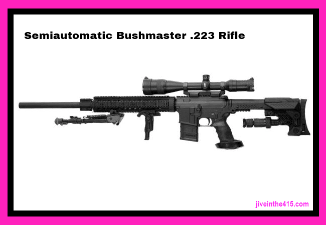 .223 Semiautomatic Bushmaster Rifle