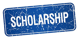 Victor & Helen Foundation UG Scholarship Form 2020