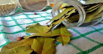 Τα φύλλα δάφνης κάνουν… θαύματα. Τέλος οι πονοκέφαλοι και οι πόνοι στις αρθρώσεις, με αυτές τις 2 συνταγές.