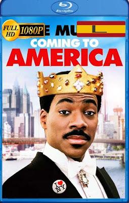 Un príncipe en Nueva York (1988) LatinoHD [1080P] [GoogleDrive] RijoHD