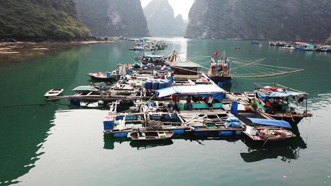 Chiêm ngưỡng làng chài đẹp nhất thế giới trên vịnh Hạ Long -4