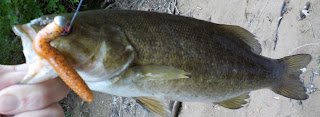 trd finesse smallmouth