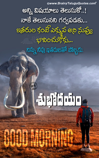 telugu quotes, online good morning messages in telugu, best telugu good morning quotes