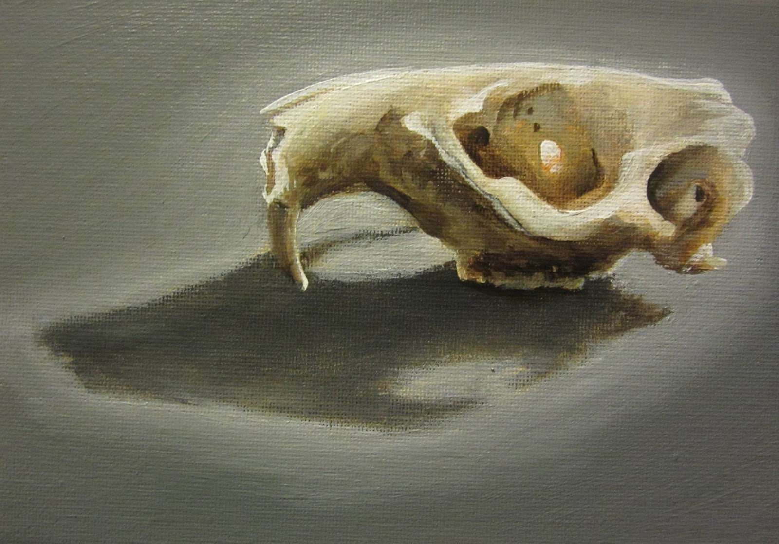 One Painting a Day: Beaver Skull