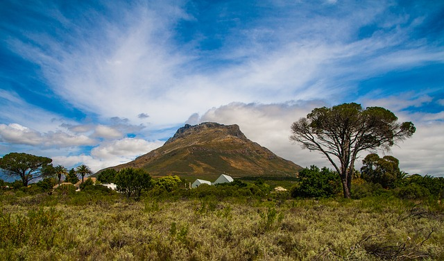 Stellenbosch, Western Cape, South africa, Travel, Tourism, Tourist attractions, Falls, National Parks, Water, River, Mountains, Seas, beaches, seashore,