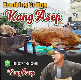 Kambing Guling di Ciwidey Bandung, kambing guling ciwidey bandung, kambing guling di ciwidey, kambing guling ciwidey, kambing guling,