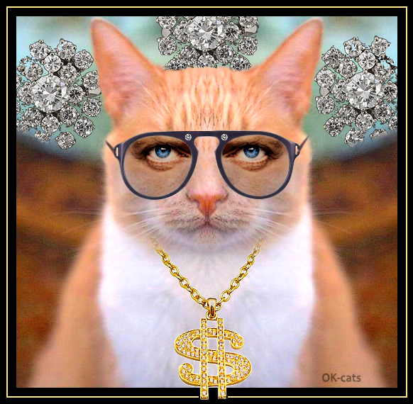 """Photoshopped Cat picture • Rich cat bought diamonds, gold collar, big gold dollar sign pendant and...human blue eyes! """""""