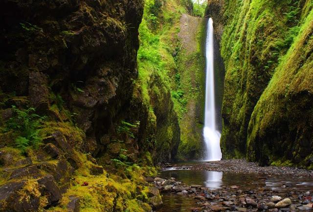 Garganta de Oneonta - Oregon