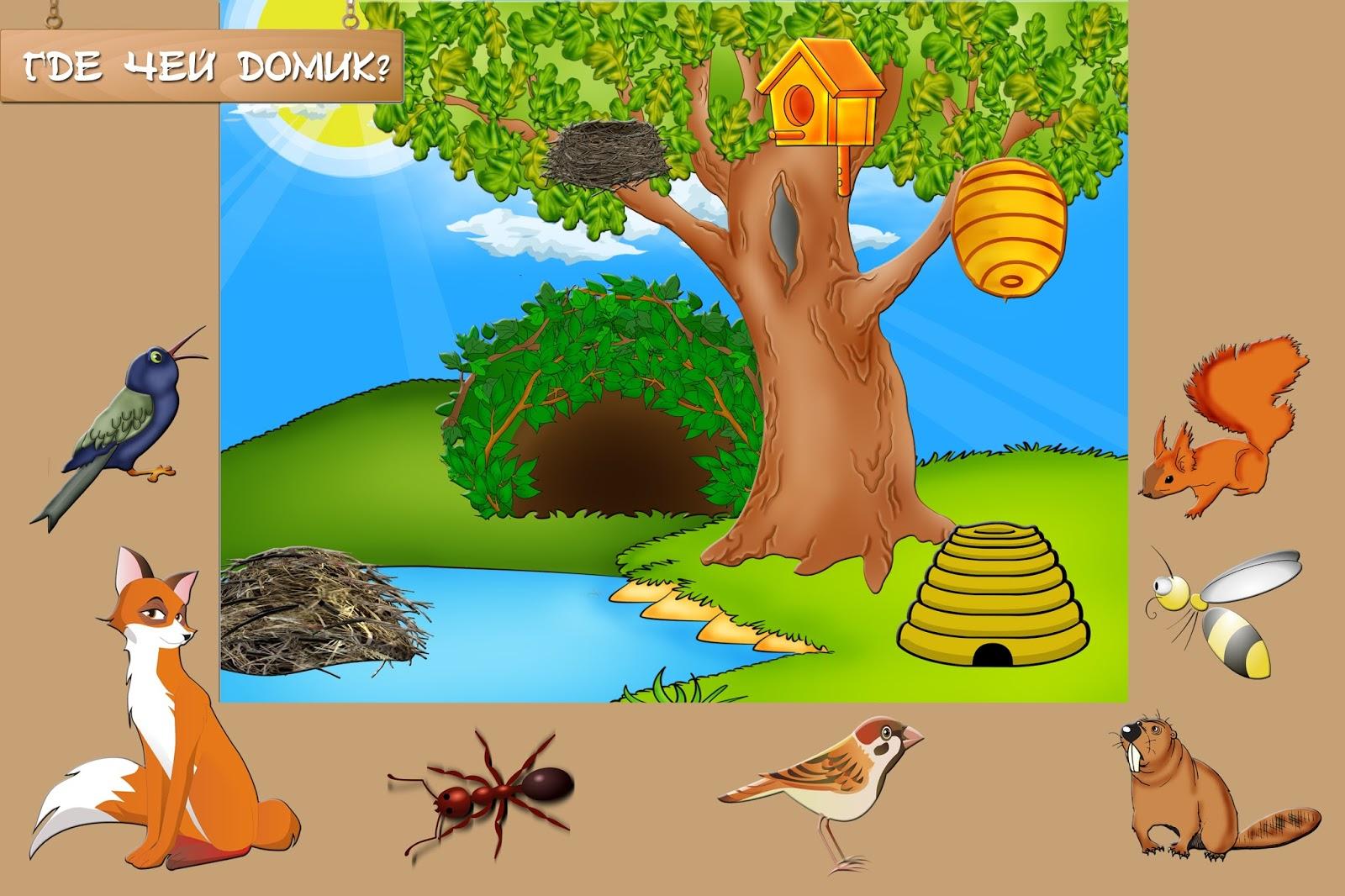 Дидактические игры по природе с картинками