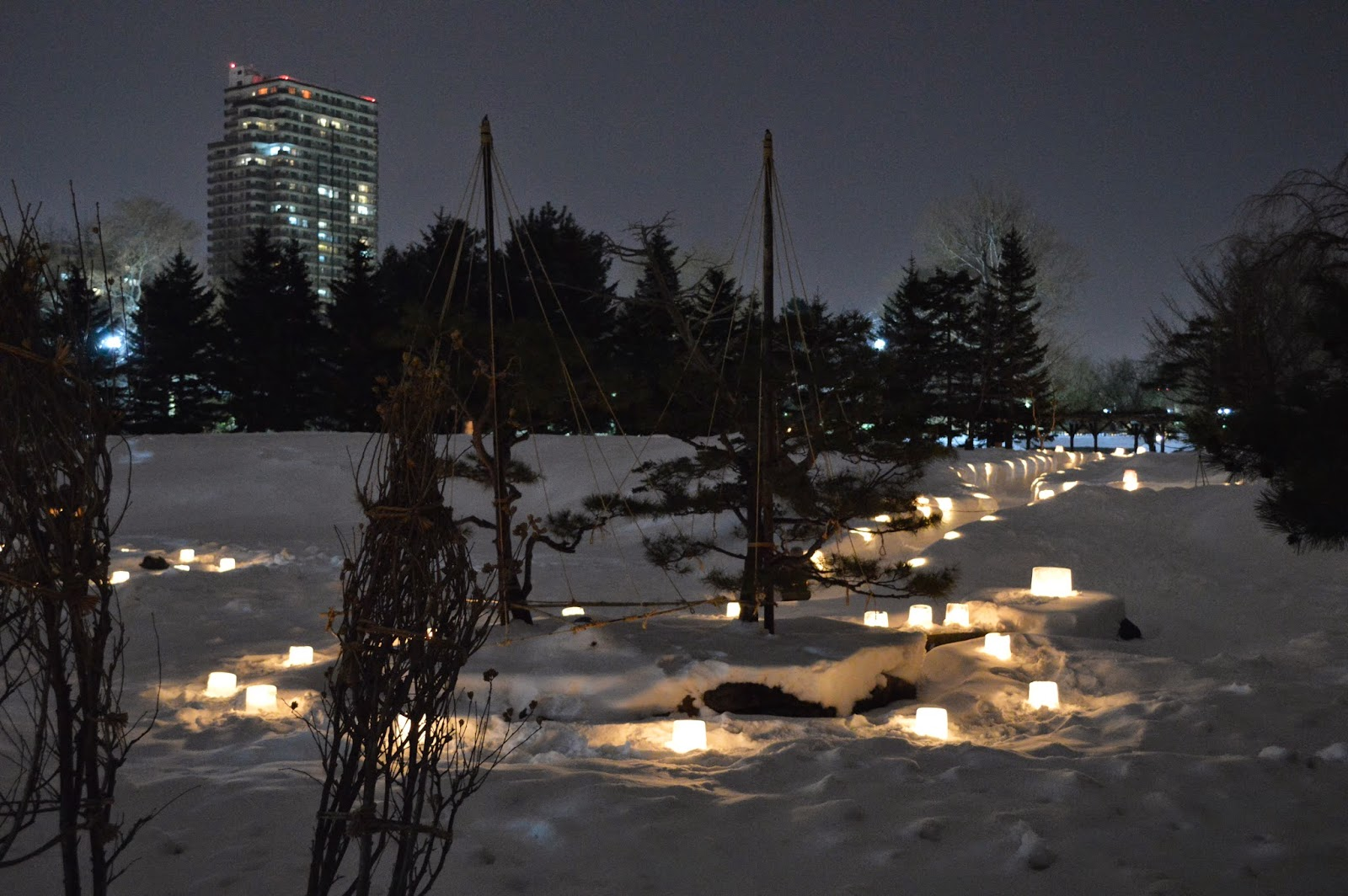 park winter night