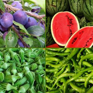Profert Gübre Ağustos Ayı Sebze ve Meyveleri