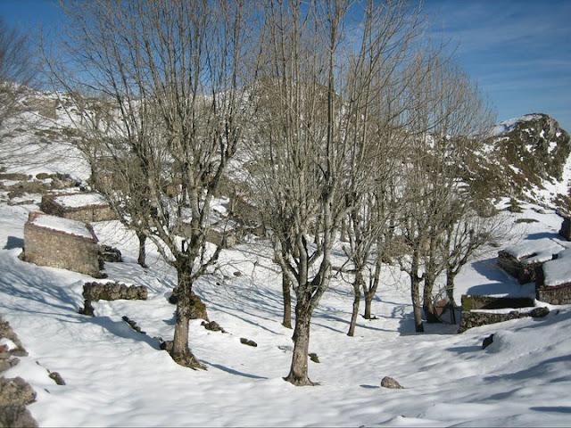 Rutas Montaña Asturias: Majada Rozagas