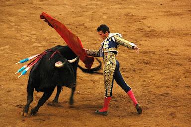bull fighting spanish speaking countries
