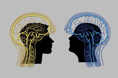 Cara Memahami Filsafat Melalui Diskusi dan Dialog