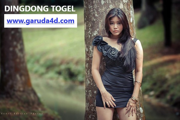 Link Alternatif Dingdong Togel