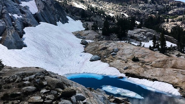 The red 'watermelon' snow covered the mountain, surprising many people