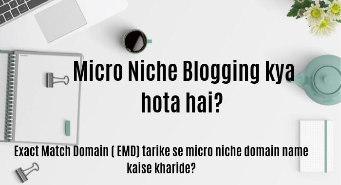Micro Niche Blogging kya hota hai? Exact Match Domain ( EMD) tarike se micro niche domain name kaise kharide.