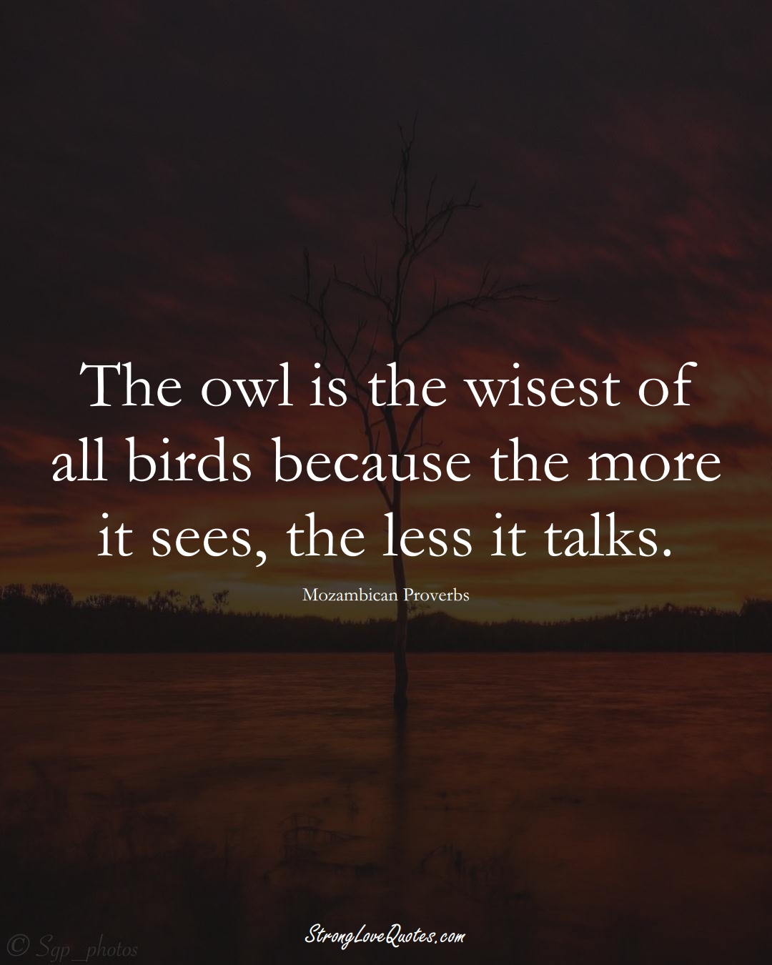 The owl is the wisest of all birds because the more it sees, the less it talks. (Mozambican Sayings);  #AfricanSayings