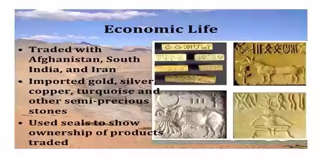 হরপ্পা সভ্যতা বা সিন্ধু সভ্যতার অর্থনৈতিক অবস্থা