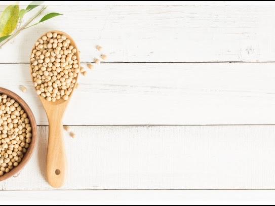 Kandungan Nutrisi Pada Susu Soya, Bisakah Menjadi Pengganti Susu Sapi?