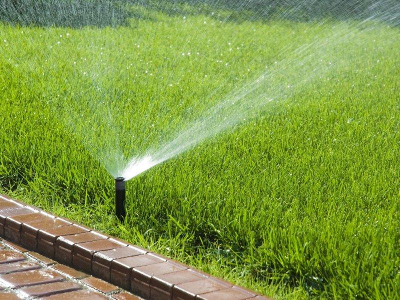 полив газона и территорий