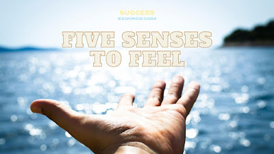 Use-All-of-Our-Five-Senses-to-Feel