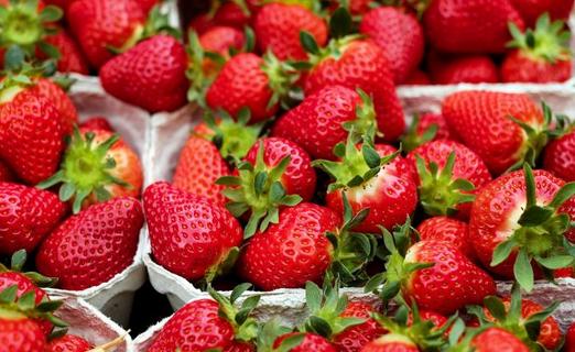 Ingin Kulit Cantik Dan Sehat, Konsumsi Makanan Berikut